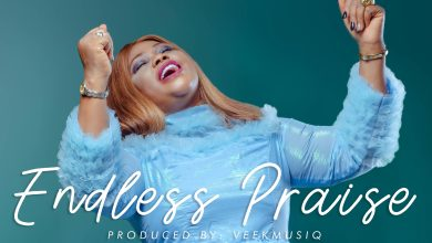 Photo of [Audio + Video] Endless Praise By Favour George