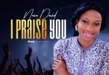 I Praise You By Nasa David
