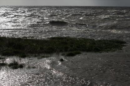 Wind und Wellen am Diekskiel. Foto: Björn Othlinghaus