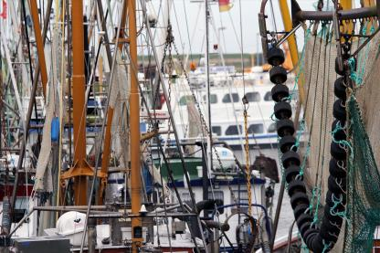 Gewirr aus Takelage und Netzen. Foto: Björn Othlinghaus