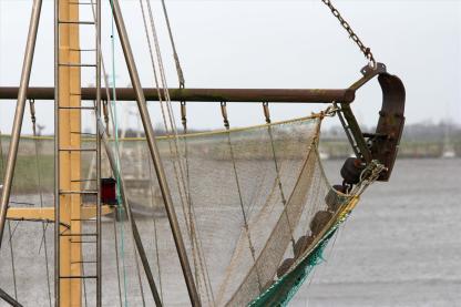 Durch das Fischernetz schweift der Blick in die Ferne. Foto: Björn Othlinghaus
