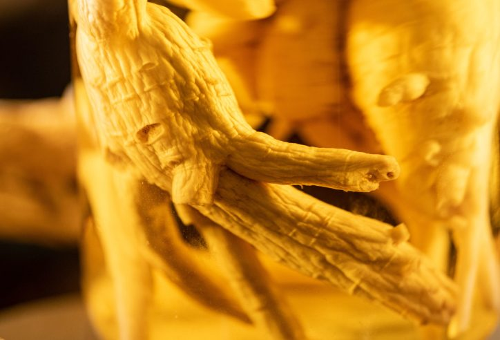 ginseng is one of the best aphrodisiacs