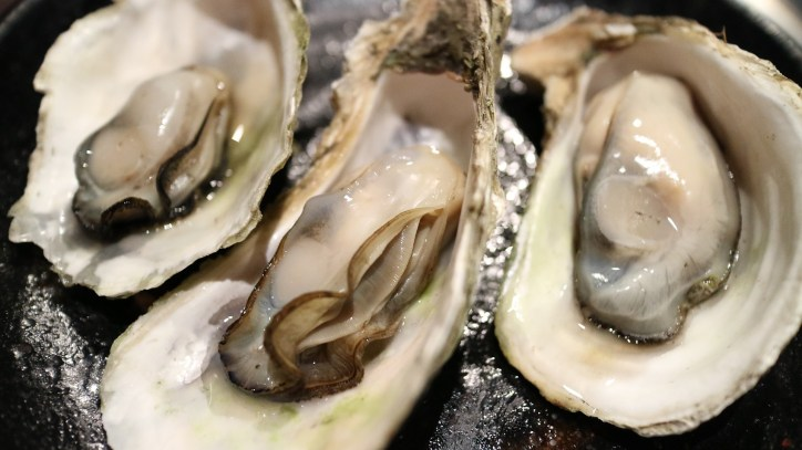 oysters are aphrodisiacs