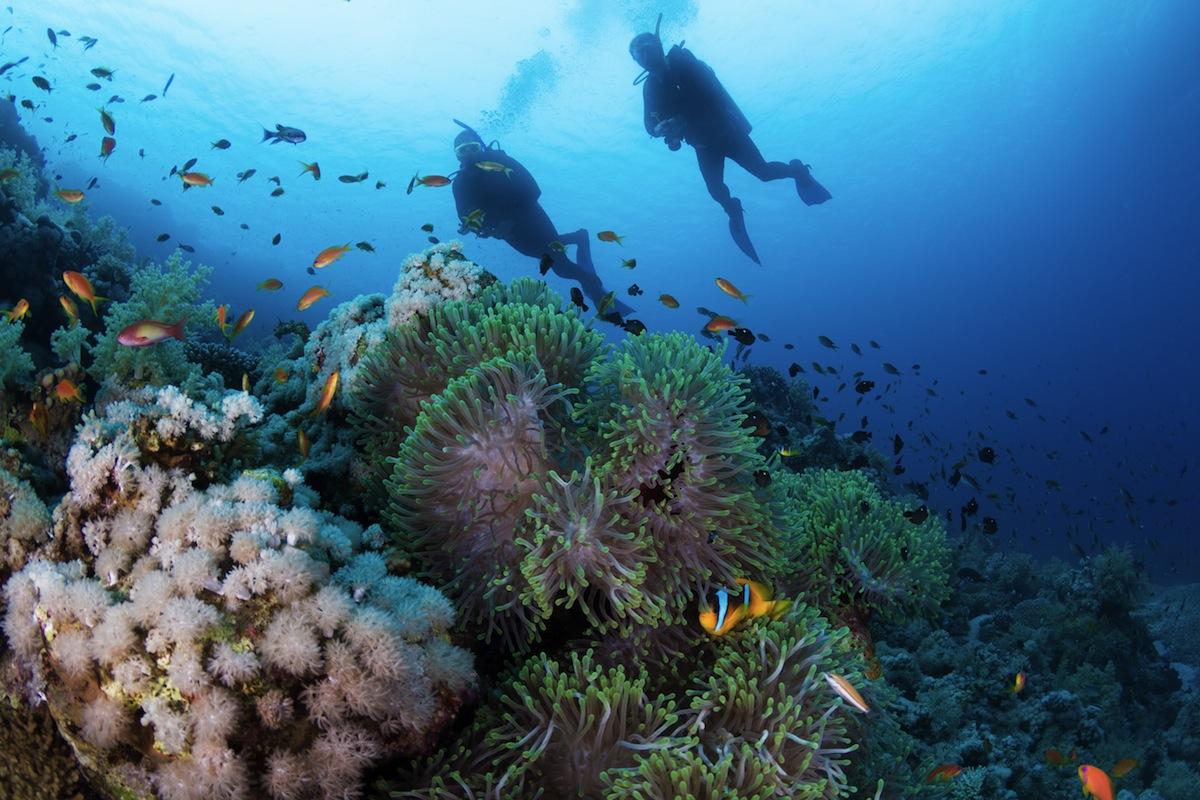 Top 10 Mediterranean Diving Sites