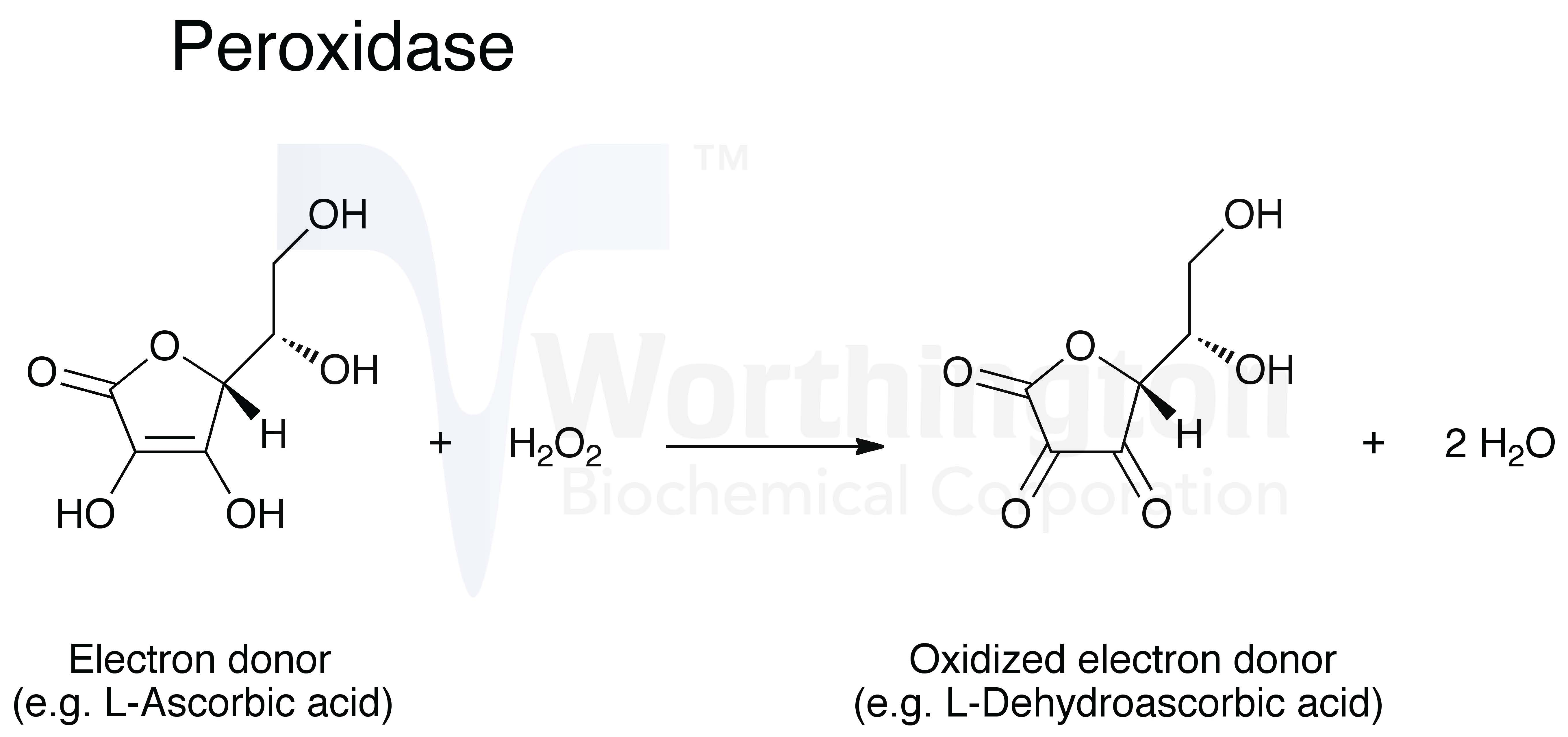 Hydrogen Peroxide Chemical Equation
