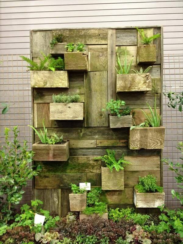22 DIY Vertical Garden Wall Ideas Worthminer