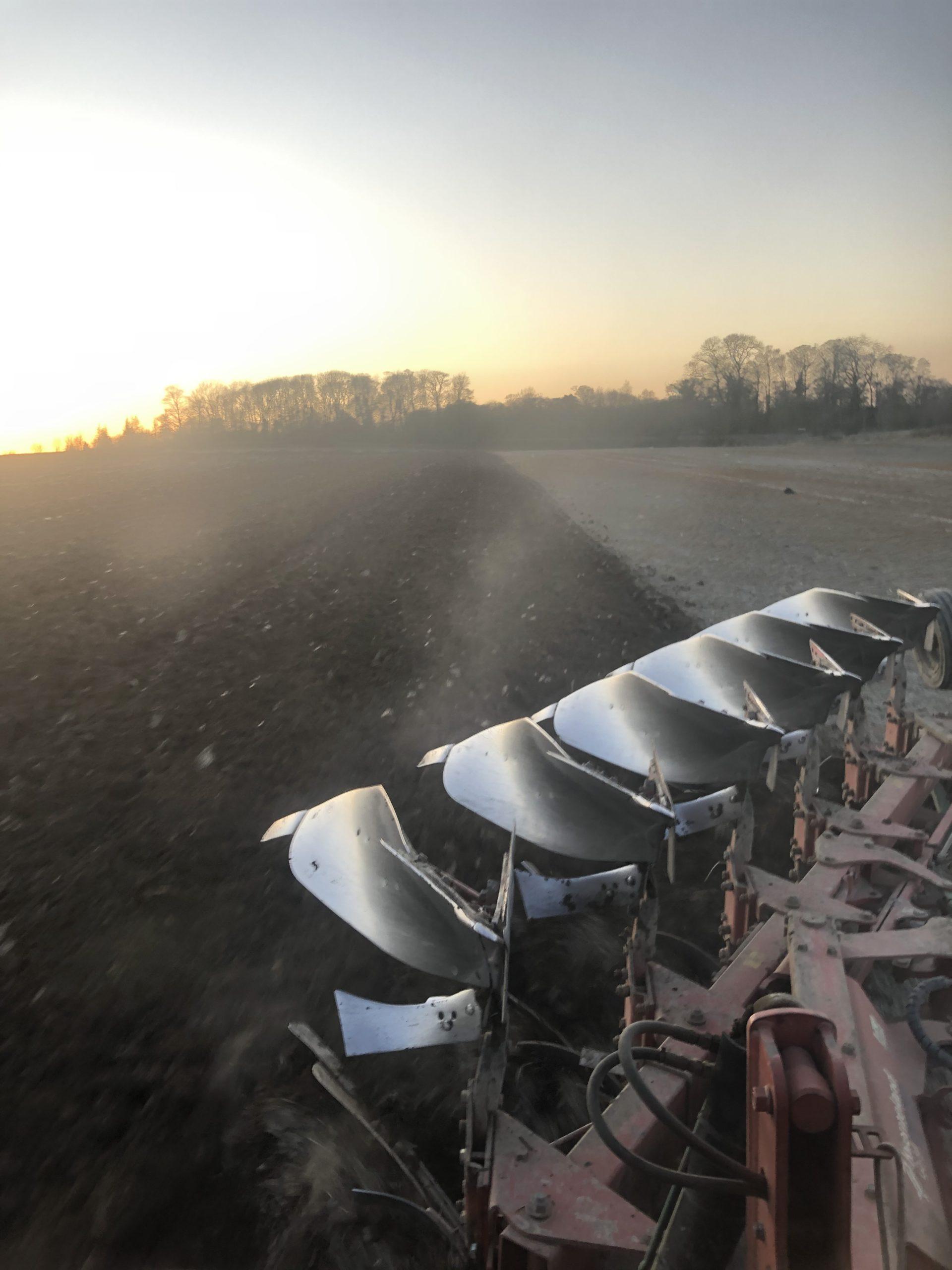 Ploughing the farm