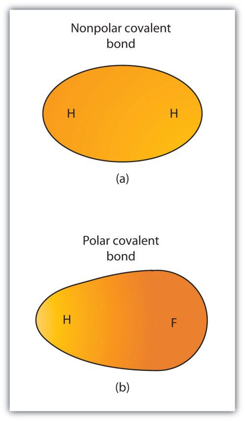 small resolution of 4 3 electronegativity and bond polarity