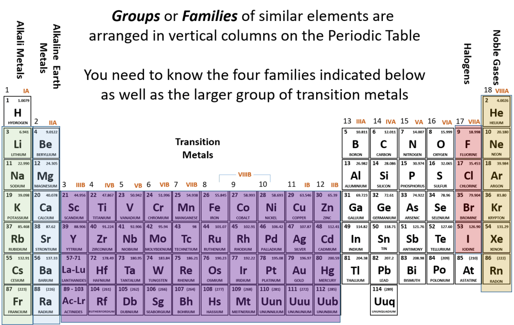 medium resolution of groups and fams ii png