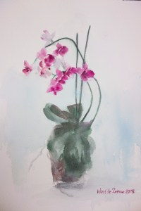 Mother's Orchids 1