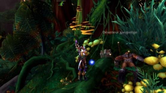 wod-carte-tresors-jungle-tanaan-05