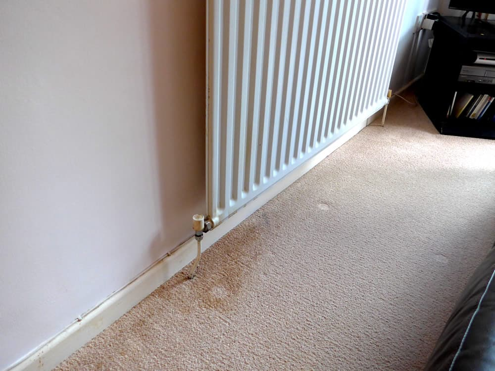 Remove Rusty Water From Carpet