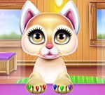 Kitty Ballerina Care And Dressup