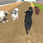 Angry Bull Racing