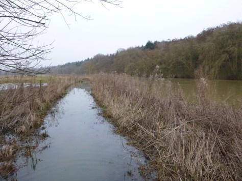Der Thames Path