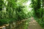 Der schöne Thames Path führt uns entlang der Themse...