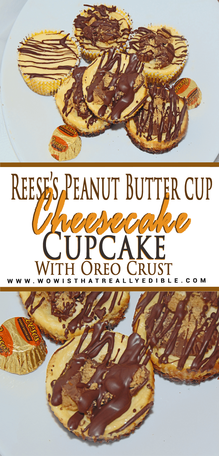 Reese's Peanut Butter Cup Cheesecake Cupcake with Oreo Crust