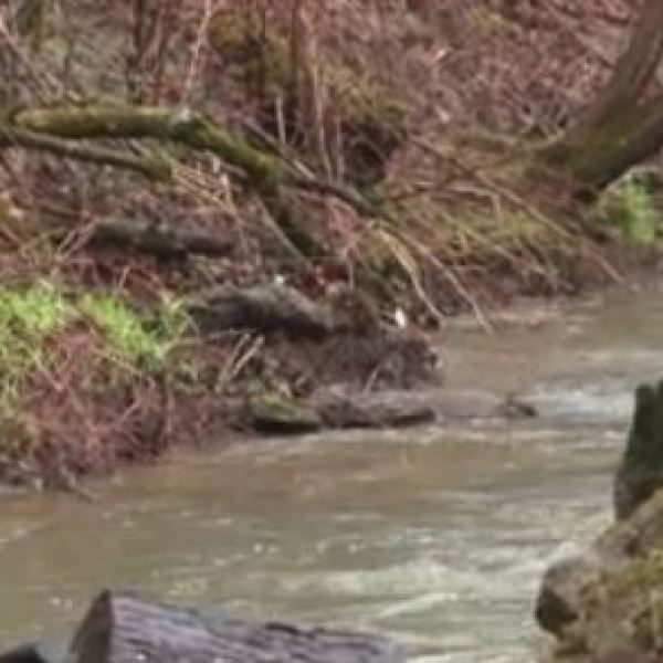 Neighbors hope to see Lens Creek cleaned up with a new sewer line.