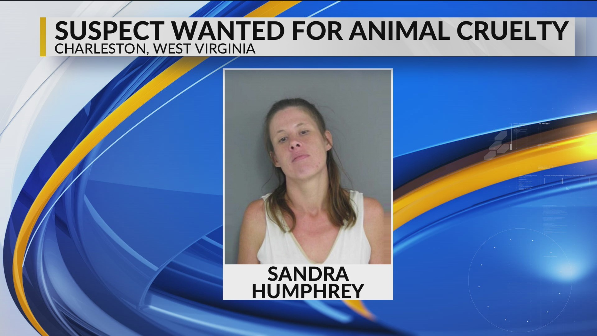 Charleston woman sought by humane officers; facing 12 counts of animal cruelty