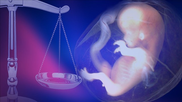 Abortion Law_1510844611106.jpg