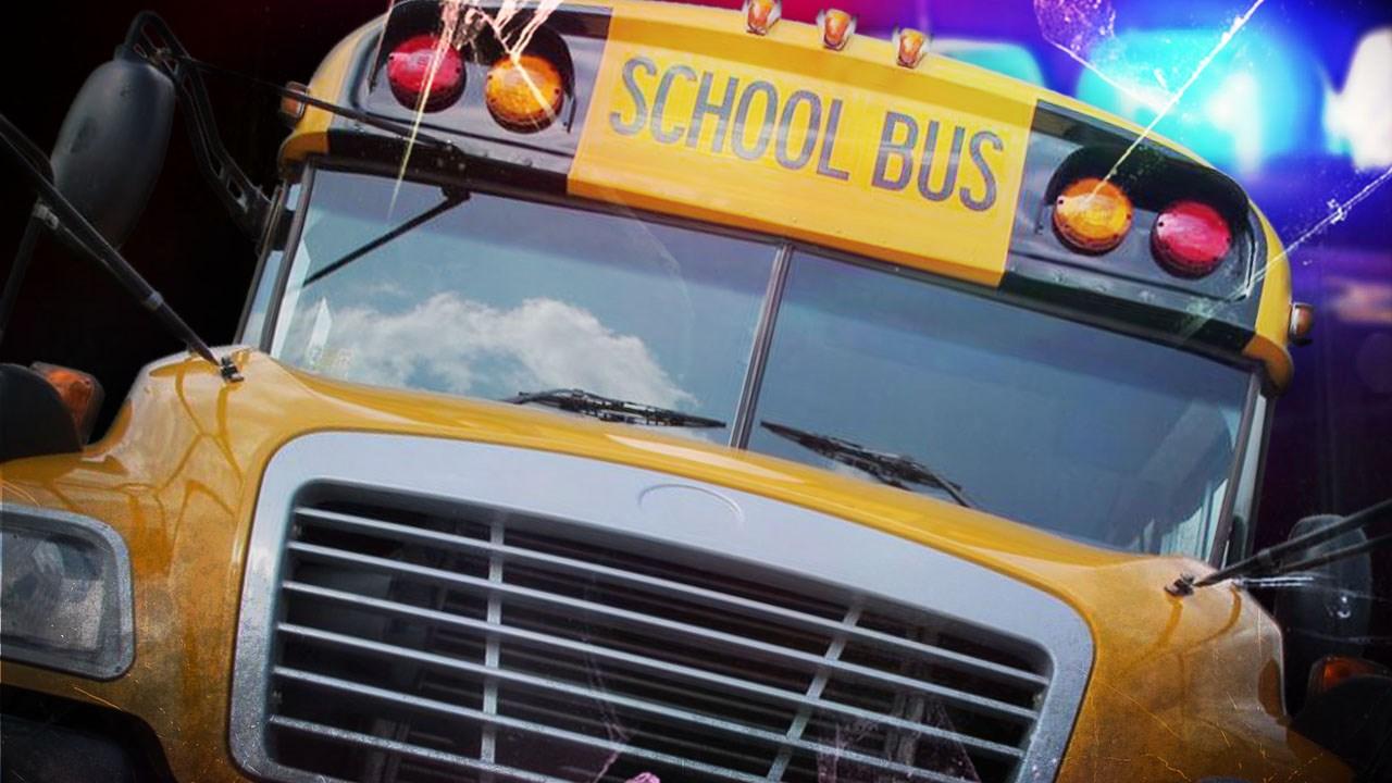School bus_1515620062138.jpg