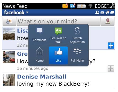 BlackBerry Beta Version