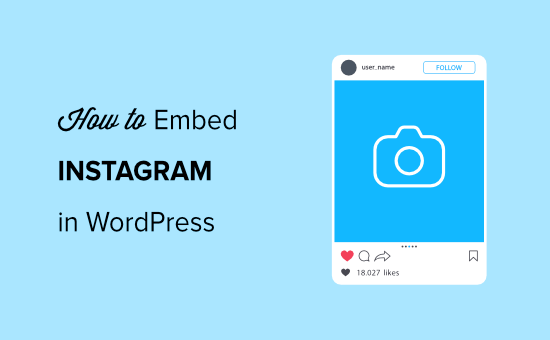 How to Embed Instagram in WordPress Website