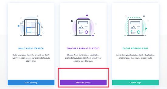 Divi layout options