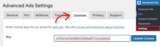 Enter advanced ads license key