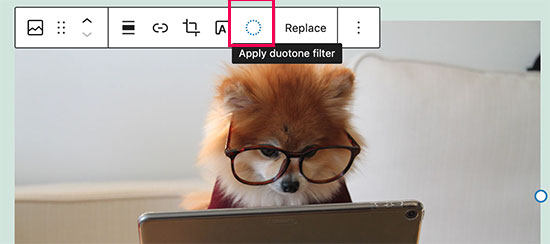Applying duotone filter to images in WordPress 5.8