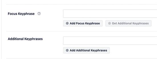 Focus keywords