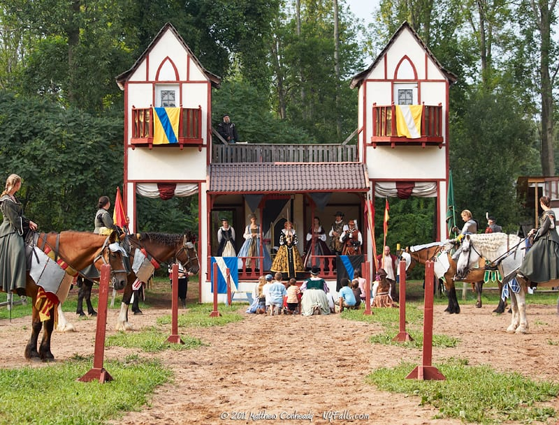 ADMISSION FOR 2  Donated by: THE STERLING RENAISSANCE FESTIVAL  Valued at: $54  Buy It Now: $16
