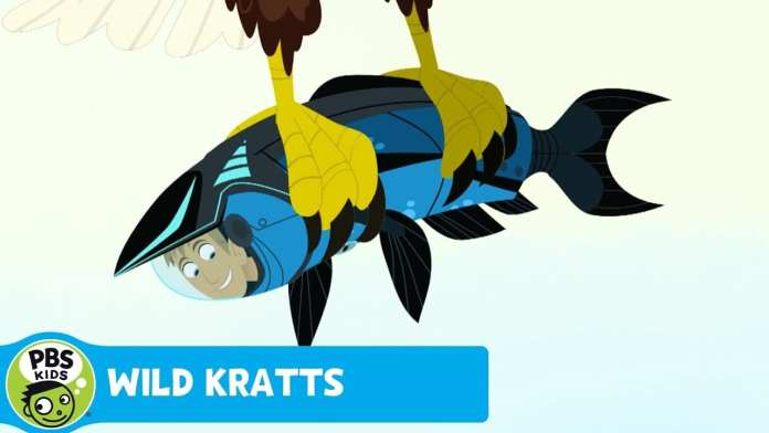 WILD KRATTS | Flip-Flop | PBS KIDS