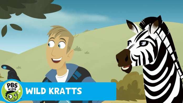 WILD KRATTS | Black or White | PBS KIDS