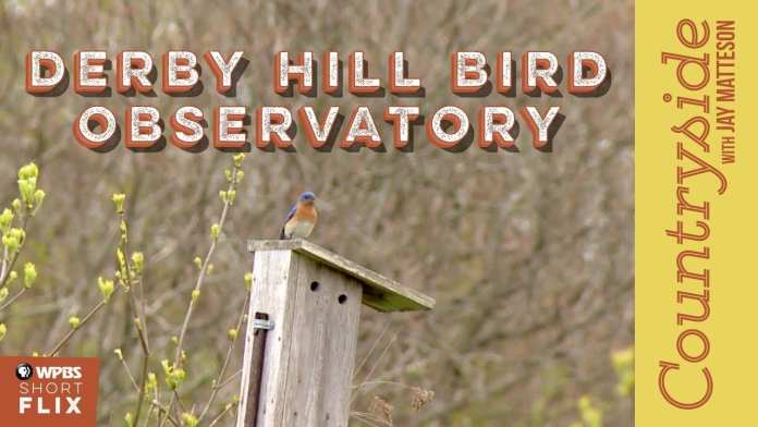 Derby Hill Bird Observatory   Countryside with Jay Matteson