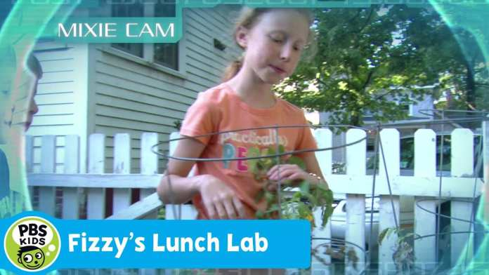 FIZZY'S LUNCH LAB   Mixie Reports: Family Meal Time   PBS KIDS