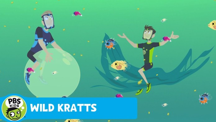 WILD KRATTS | Underwater Nursery | PBS KIDS