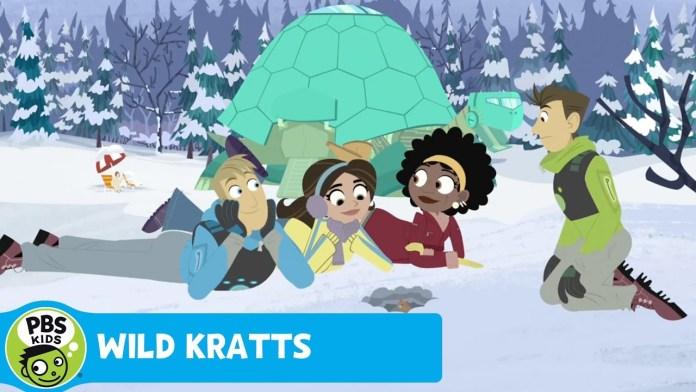 WILD KRATTS | Vole: Livin' Creature Style | PBS KIDS