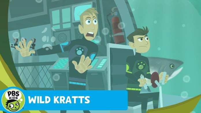 WILD KRATTS | Shark!! | PBS KIDS