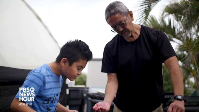 Movement aims to make Hawaii more self-sustaining through aquaponic farming