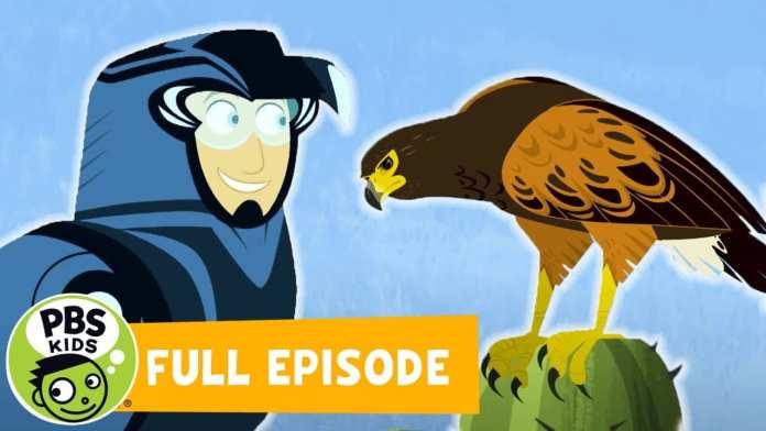 Wild Kratts FULL EPISODE | Wolf Hawks | PBS KIDS