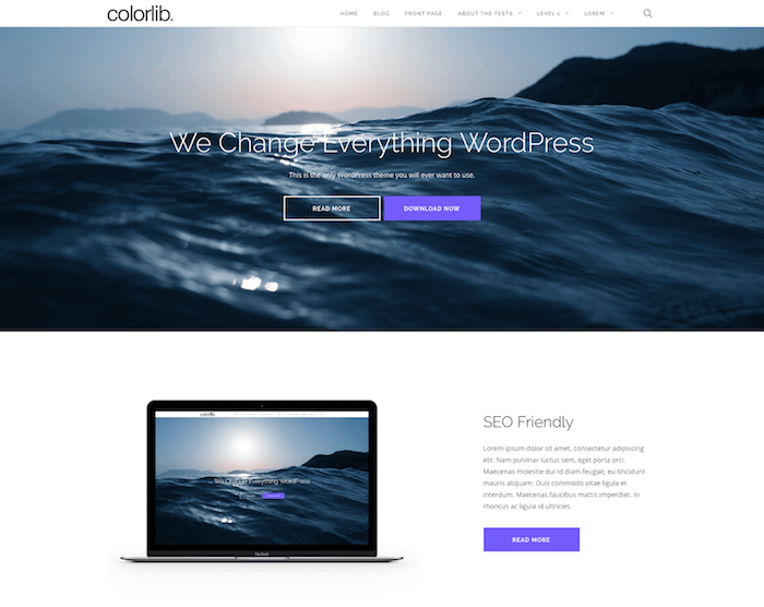 Wordpress Shapely Theme Style
