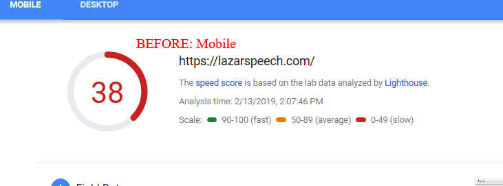 PageSpeed Insights(4)