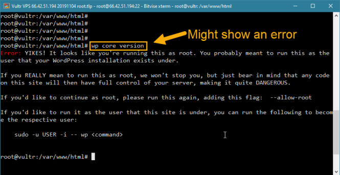erreur d'accès root wp-cli wordpress vps