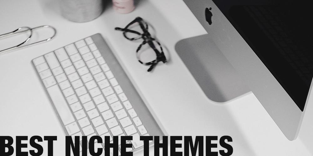 10+ Best Professional Niche WordPress Themes
