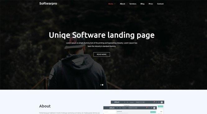 Softwarepro Thème WordPress
