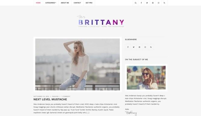 Thème WordPress pour blog gratuit Brittany Light