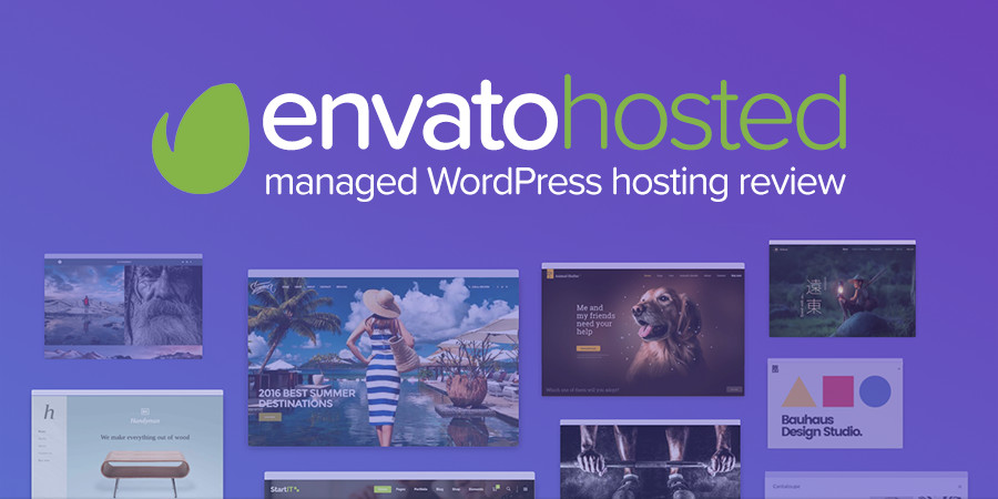 Envato Hosted Managed WordPress Hosting Review