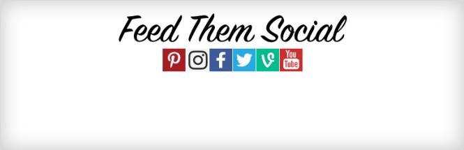 Alimentez-les Flux sociaux Plugin WordPress gratuit