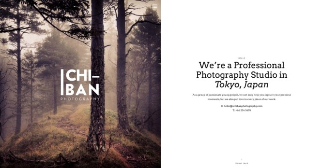 Ichiban Elegant Photography Thème WordPress